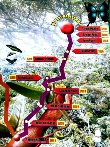 Trusmadi Summit Trail