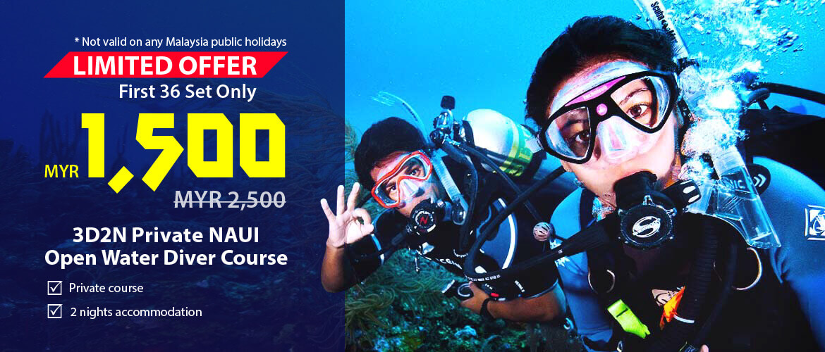 Limited Offer - 3D2N Private NAUI Open Water Diver Course