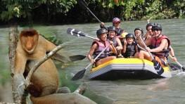 Kiulu Rafting + Proboscis Monkey + Fireflies