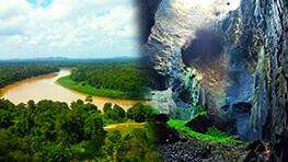 Gomantong Cave & Kinabatangan River