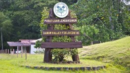 3D2N Danum Valley Field Centre