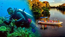 美人鱼岛体验深潜 + 卡哇卡哇红树林船游