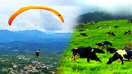 Ranau Paragliding + Desa Farm