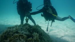 Bakungan Kecil Island Diving
