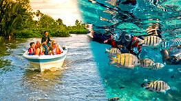 Pandan Pandan Snorkeling + Kawa Kawa River Cruise