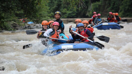 Kiulu Rafting + Muara Bay Fireflies