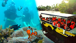 Pandan Pandan Island Diving + River Cruise