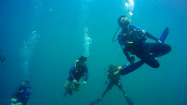 Sepanggar Island Discovery Scuba Diving