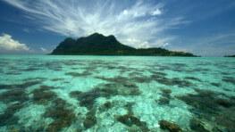 马布 / 卡帕莱 / 敦沙卡兰海洋公园 潜水