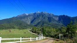 Kinabalu Park and Poring Hot Spring