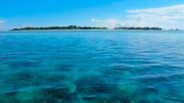3D2N Pom Pom Island Holiday Trip