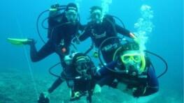 Sapi Island Discover Scuba Diving