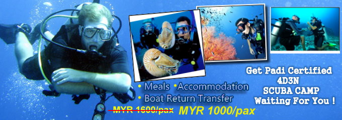 Get Padi Certified 4D3N Scuba Camp waiting you !
