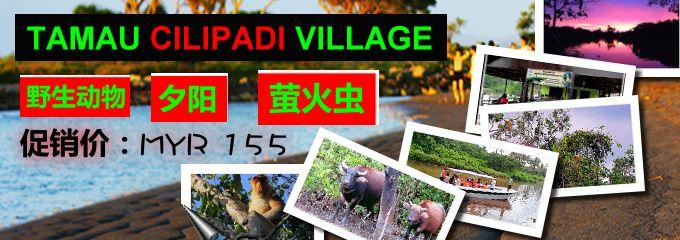 Tamau Cilipadi Village - 促销优惠